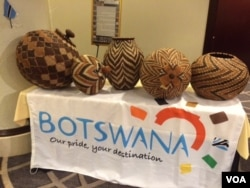 Art from Botswana on display at the 2015 Africa Day gala, (Mariama Diallo/VOA).