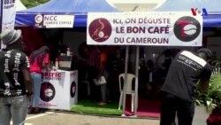 Kamerun qəhvəsi