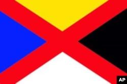 昙花一现的中华帝国国旗