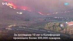 Гель против лесных пожаров