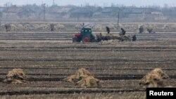 북한 신의주의 협동농장. (자료사진)