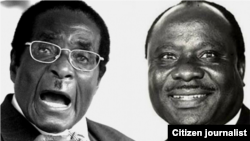 President Robert Mugabe and former cabinet minister Enos Nkala (right)