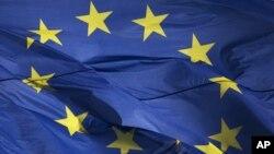 Avrupa Birliği'nin Suriye'ye uyguladığı silah ambargosu konusunda farklı görüşte olan Fransa ve Almanya bir kez daha karşı karşıya geldi.