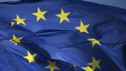 Taurai Shava Reports On EU's Continued Support For Zimbabwe's Civil Society