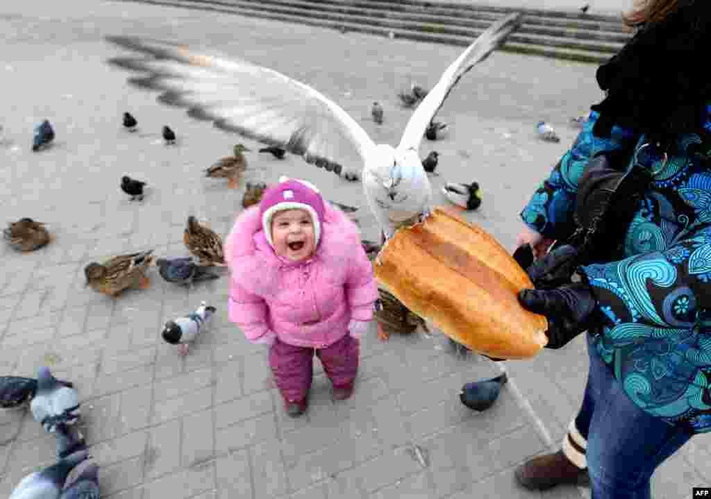 Mother and her child feed birds in the Belarus capital Minsk.