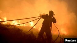 A firefighter gathers hoses while fighting a forest fire near the Basque town of Berango, near Bilbao, northern Spain, Dec. 28, 2015.