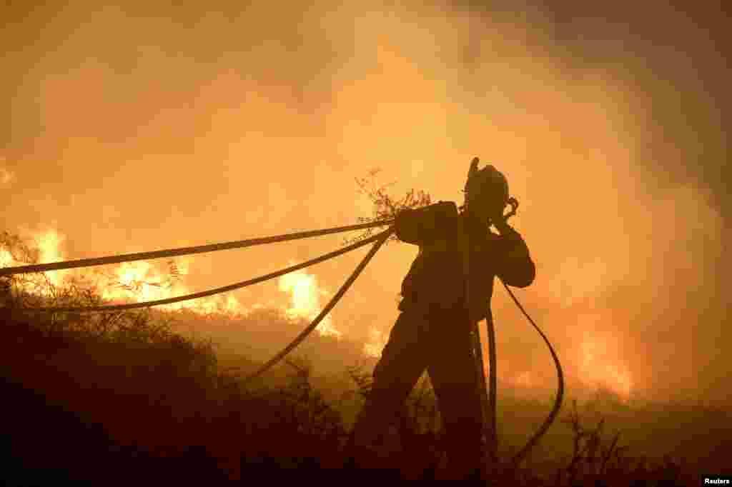 Bombeiro luta contra incêndio florestal na localidade basca de Berango no noroeste da Espanha.