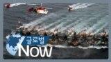 """[글로벌 나우] 중국 불법조업 """"살아 움직이는 건 다 잡아가"""""""