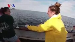 Teenage Girls Find Confidence in the Open Sea