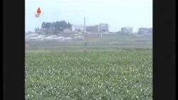 北韓面臨百年來最嚴重的旱災