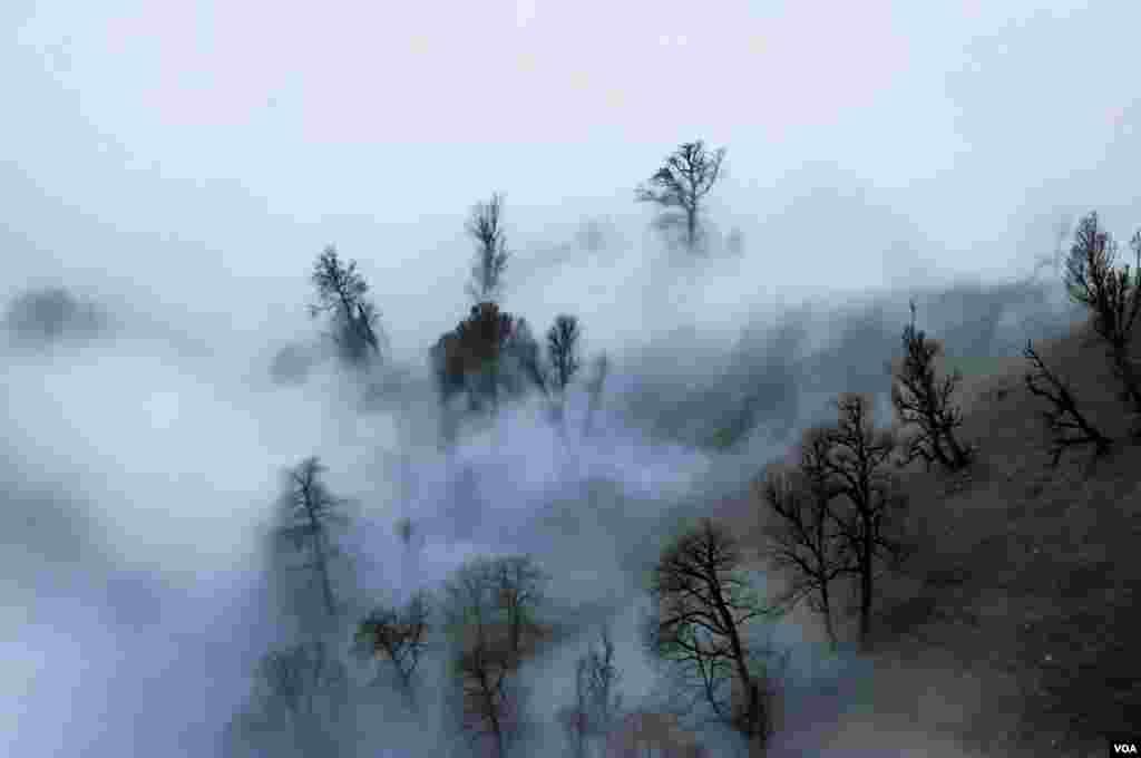 ارتفاعات ماسال در استان گیلان عکس: مصطفی شیرمحمدی(ارسالی شما)