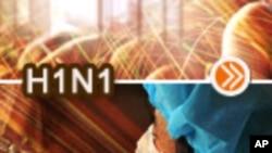 应对甲型H1N1流感