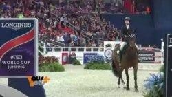 DC: Le cheval Fait son show