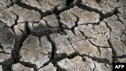 Çin'de Kuraklık Tehlikesi Azaldı