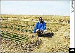 Challenges Facing Africa's Farming Community