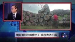 媒体观察:缅甸重判中国伐木工 北京表达不满
