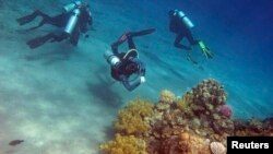 Ronioci u blizini koralnog grebena na dnu Crvenog mora (Foto: Reuters)