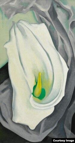 "Georgia O'Keeffe, 1887-1986, ""White Calla Lily"" (Courtesy: Sotheby's)"