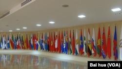 上議院聯邦委員會中所懸掛的俄羅斯各地區的旗幟。(美國之音白樺拍攝)