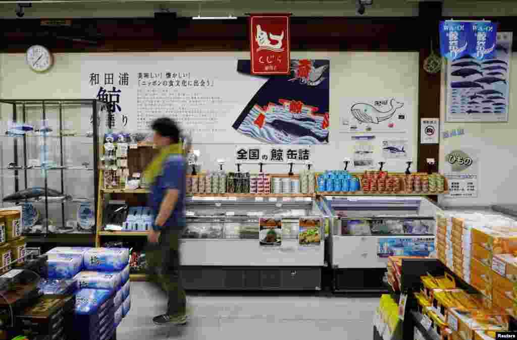 جاپان کی وزارتِ داخلہ کا کہنا ہے کہ وہیل مچھلیوں کا شکار حیاتیاتی پیمانے جانچنے کے لیے ضروری ہے۔