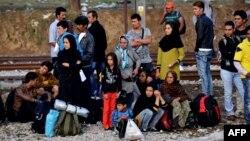 Những người di cư và người tị nạn chờ đợi để vượt qua biên giới Hy Lạp-Macedonia gần làng Idomeni, phía bắc Hy Lạp, ngày 14/9/2015.