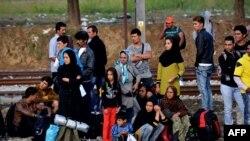 بیشتر پناهجویان تازه وارد در ناروی مسلمانان عراقی، سوری و افغانستانی هستند.