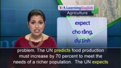 Anh ngữ đặc biệt: Global Food / Soybean Study (VOA-Ag)