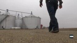 Як американські фермери вживають під час торговельної війни з Китаєм. Відео