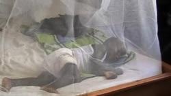 世界衛生組織:瘧疾仍然是威脅