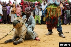 Dadin Duniya duduk di atas hyena dalam pertunjukan sirkus di Gabasawa, Kano State, Nigeria, July 27, 2021. (REUTERS)