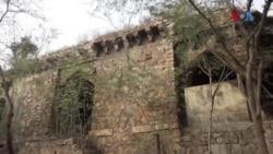 دہلی کے جنگل کا شہزادہ کون تھا؟