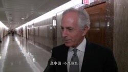美参院外委会主席:盼中国切断与朝贸易