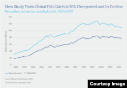 Big Catch in Decline (Pew Charitable Trusts)