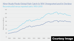 Fish catches have declined in the 90s (Pew Charitable Trusts).
