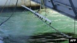 4 млрд долларов выплатят пострадавшим от разлива нефти в Мексиканском заливе