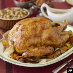 If they did eat turkeys at the first Thanksgiving, they were probably not as plump as today's holiday birds.