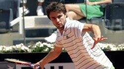 حذف رادیک و داویدنکو از تنیس ایتالیا