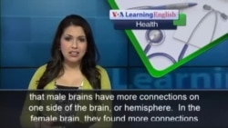 The Brains of Women and Men Really Are Different