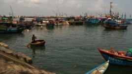 Tàu thuyền đánh bắt cá neo đậu ở cảng Quy Nhơn