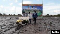 Optimasi lahan rawa merupakan salah satu jawaban untuk ketersediaan ketahanan pangan Indonesia di masa depan. (Foto: Twitter/@Syahrul_YL)