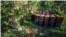 <div>برداشت سیب از باغات دژکرد فارس<br /> عکس: محمدهادی خسروی</div>