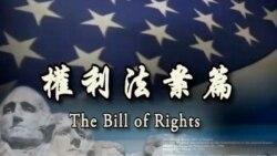 美式民主:美国宪法第二修正案 (第三部分)