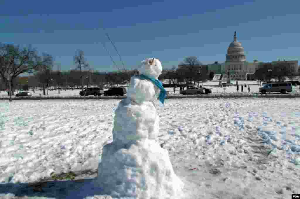 华盛顿国会山前的雪人