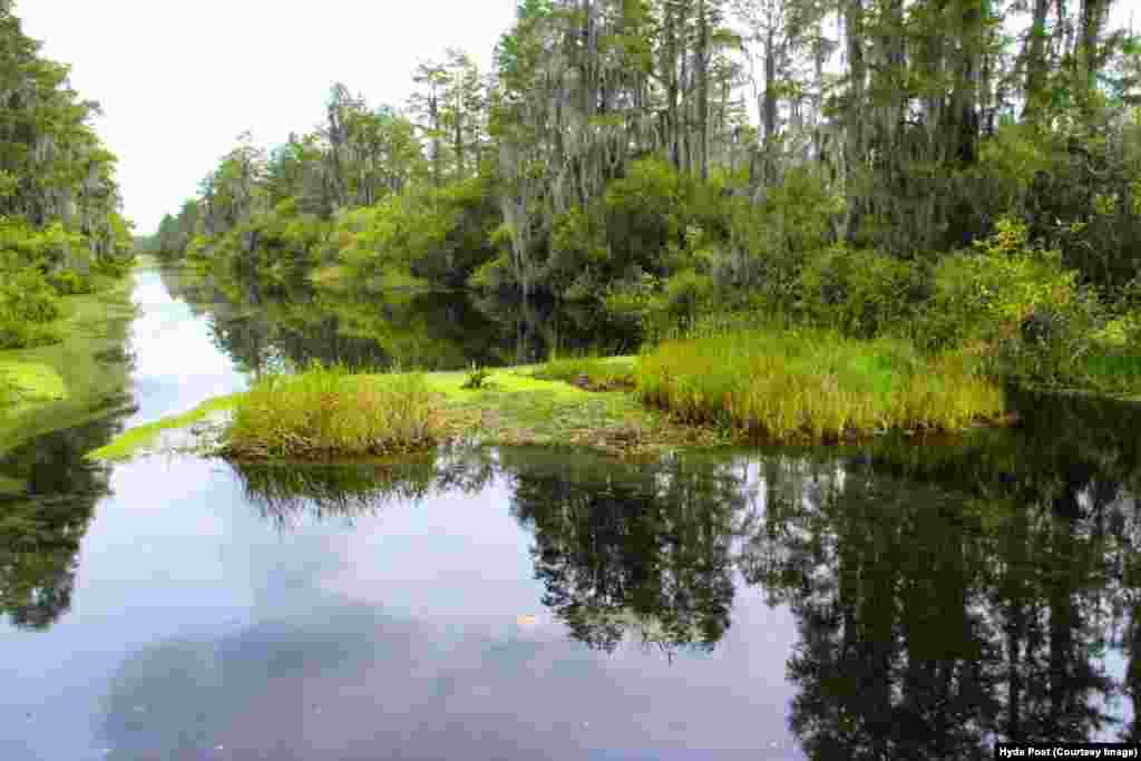 اوکیفینوکی بزرگترین مرداب طبیعی، یکپارچه و دستنخوردهء آب شیرین و آب سیاه در قاره آمریکای شمالی محسوب میشود.