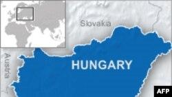 Macaristan'da Zehirli Atık Deposu Çöktü