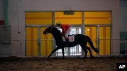 北京马术马业展一位中国骑手