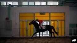Một người nài cưỡi ngựa tại một buổi trình bày về công nghiệp ngựa ở Bắc Kinh, Trung Quốc