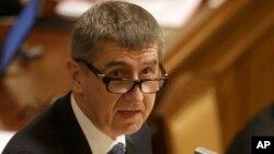 Премьер-министр Чехии Андрей Бабиш