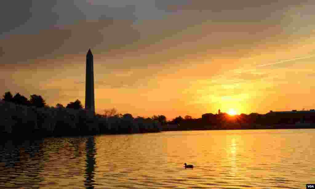 Восход. Монумент Вашингтону