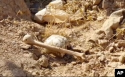 Bones lie on the ground in an area recently retaken from the Islamic State group, at an abandoned base near the northern town of Hawija, Iraq, Nov. 11, 2017.